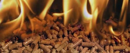 Calderas de Biomasa: impacto en la actualidad